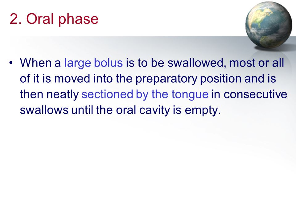 2. Oral phase
