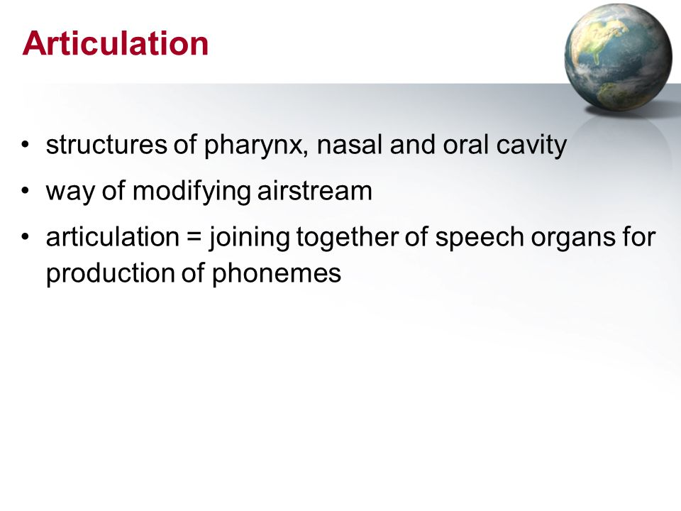 Articulation structures of pharynx, nasal and oral cavity