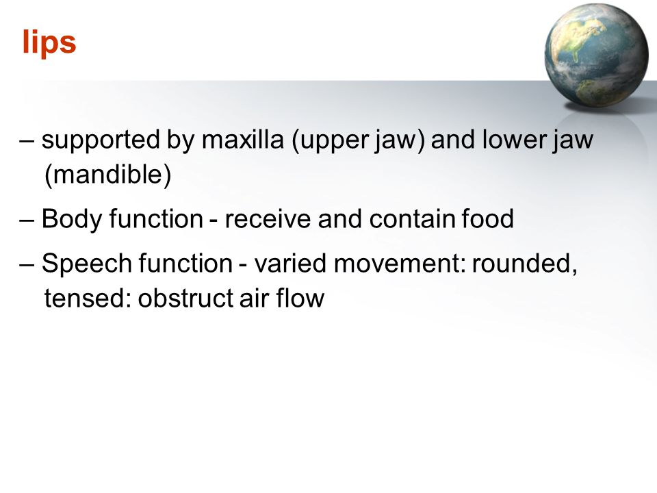 lips – supported by maxilla (upper jaw) and lower jaw (mandible)