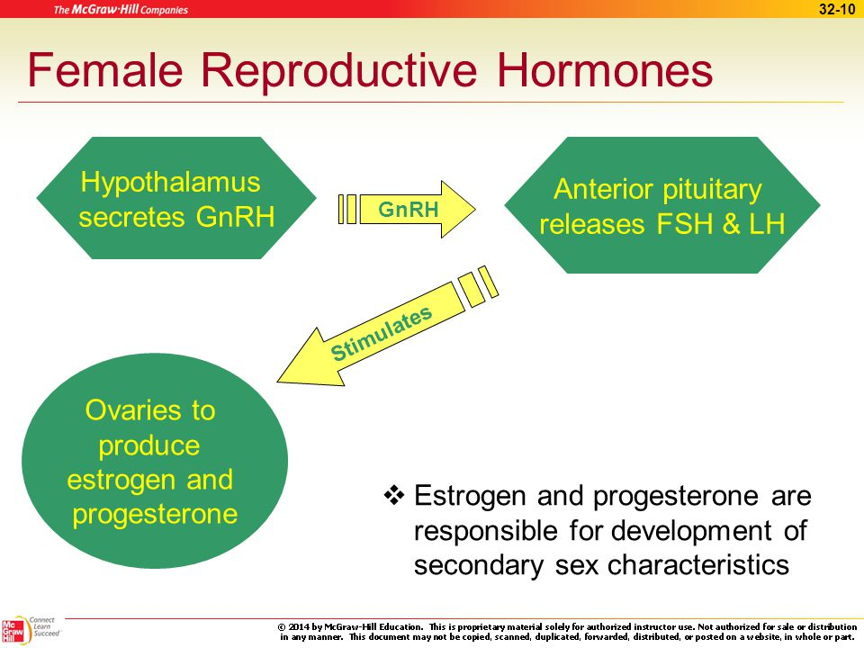 Female Reproductive Hormones