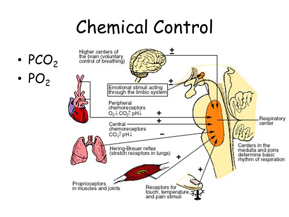 Chemical Control PCO2 PO2