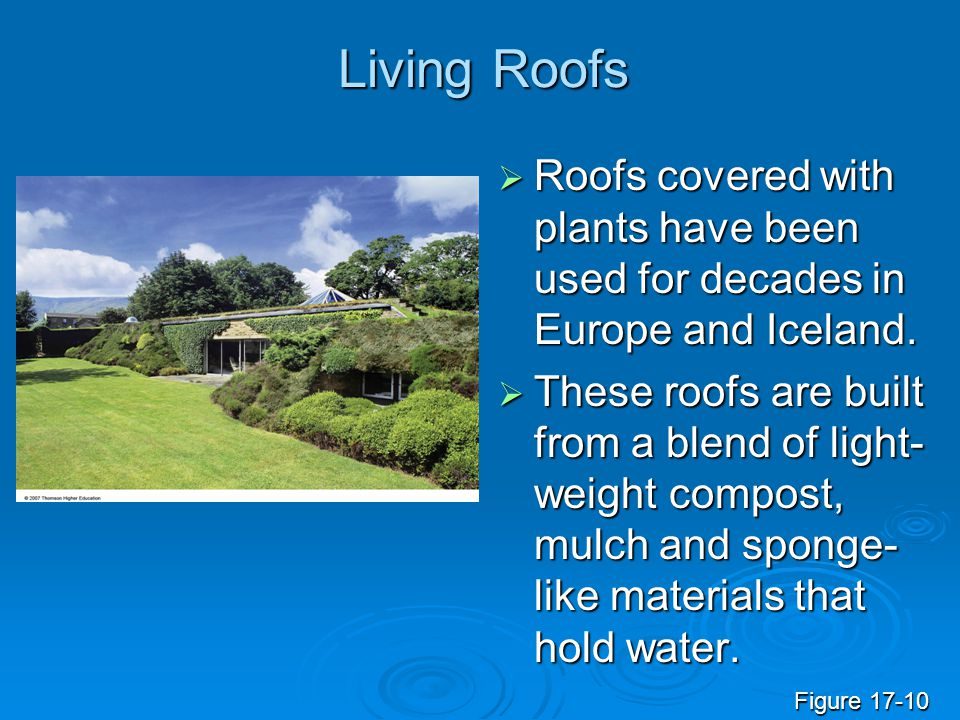 Living Roofs Roofs covered with plants have been used for decades in Europe and Iceland.