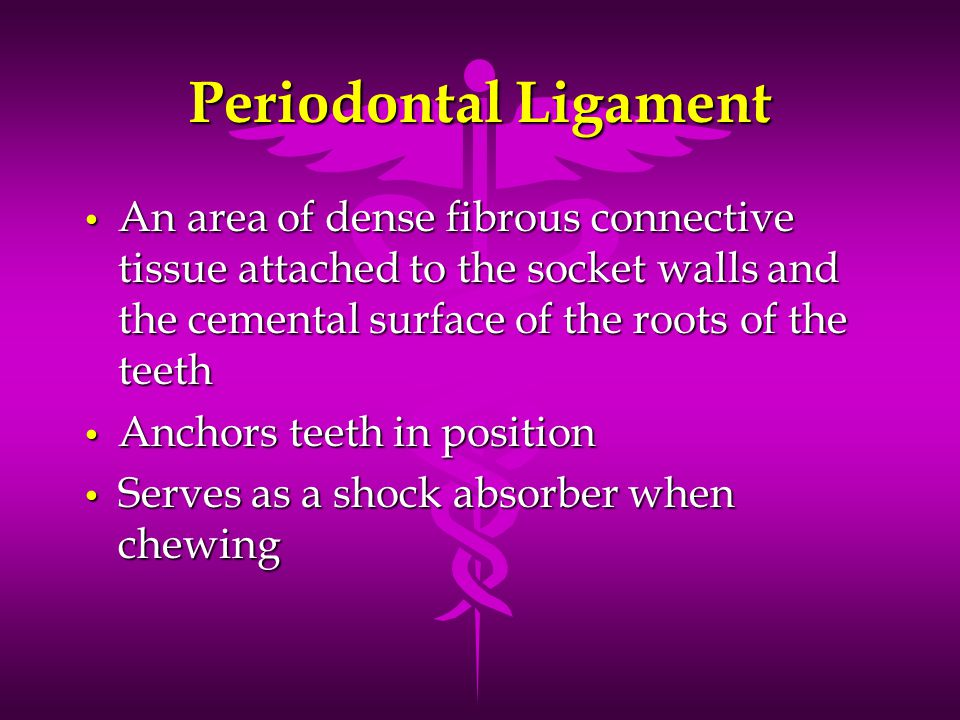 Periodontal Ligament An area of dense fibrous connective tissue attached to the socket walls and the cemental surface of the roots of the teeth.
