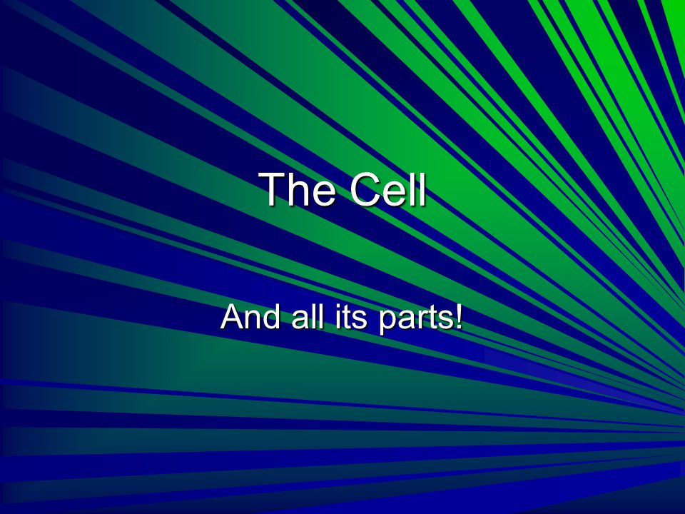 The Cell And all its parts!