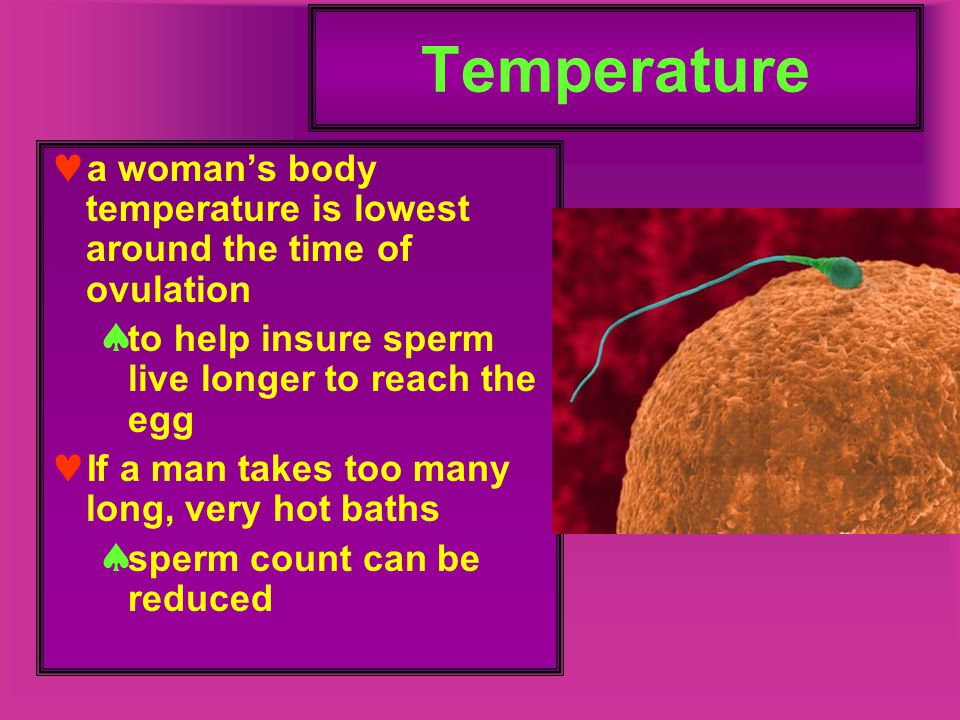 Temperature a woman's body temperature is lowest around the time of ovulation. to help insure sperm live longer to reach the egg.