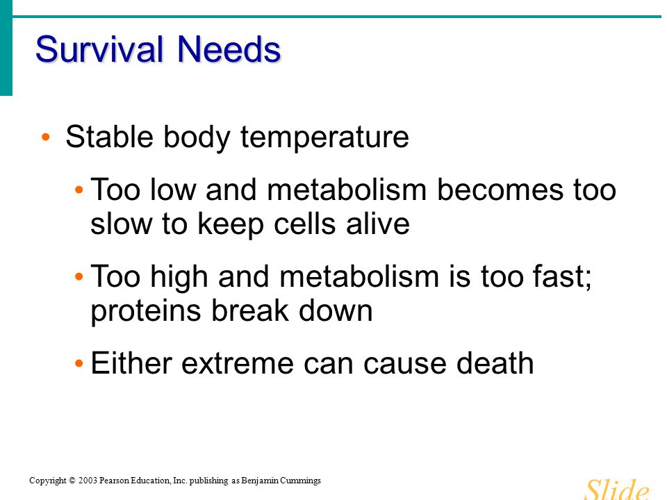 Survival Needs Slide 1.17b Stable body temperature