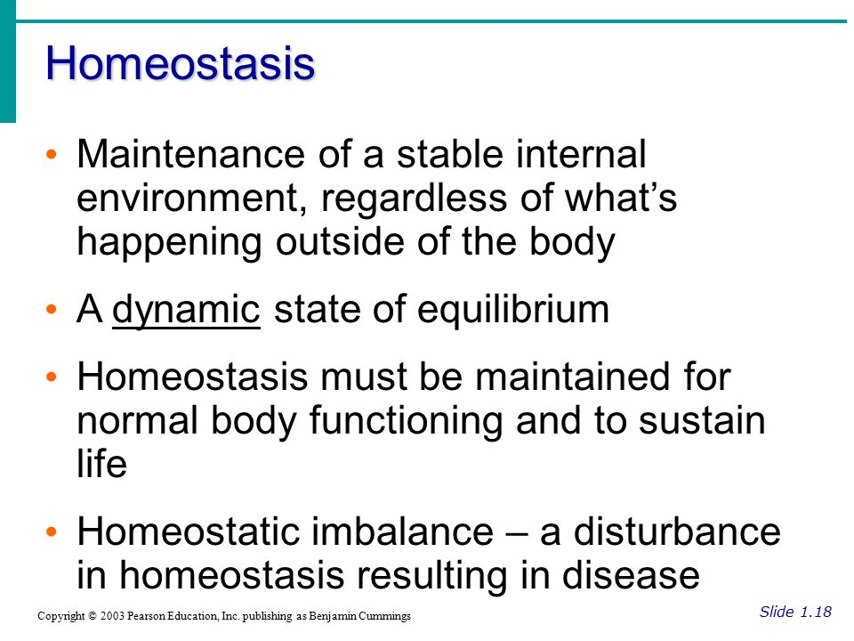 Homeostasis Maintenance of a stable internal environment, regardless of what's happening outside of the body.