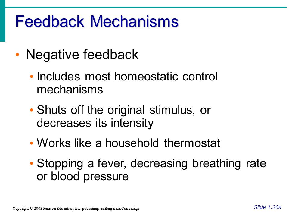 Feedback Mechanisms Negative feedback