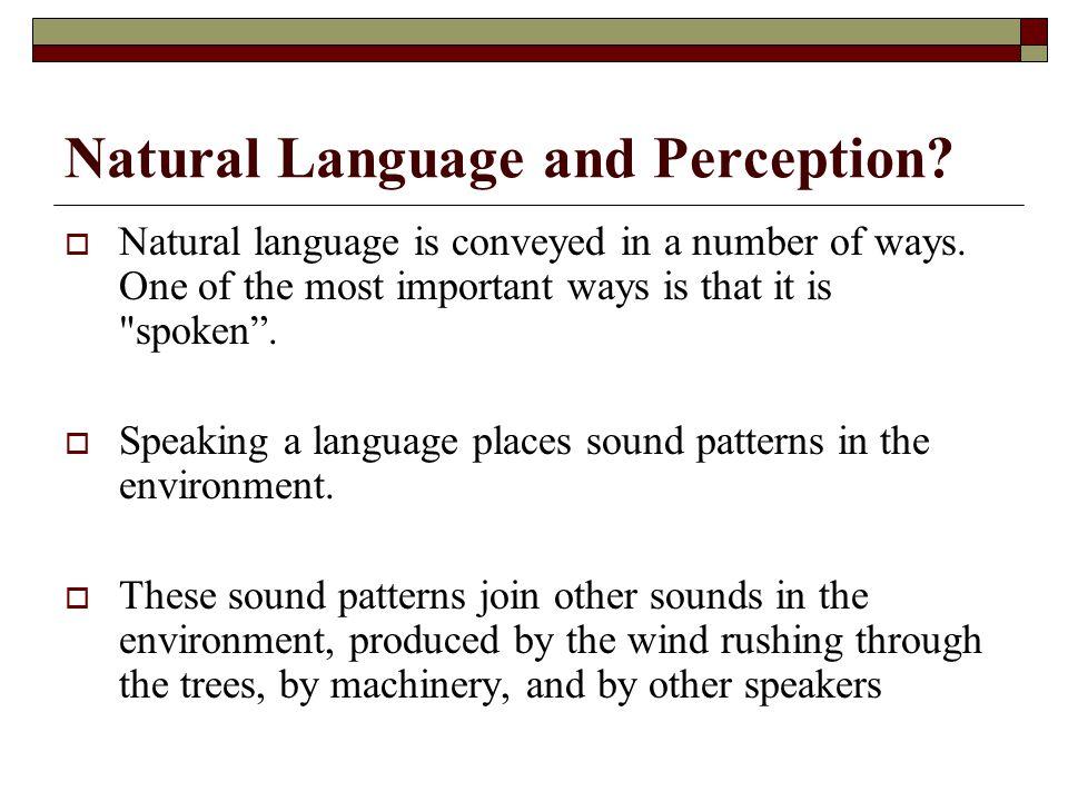 Natural Language and Perception