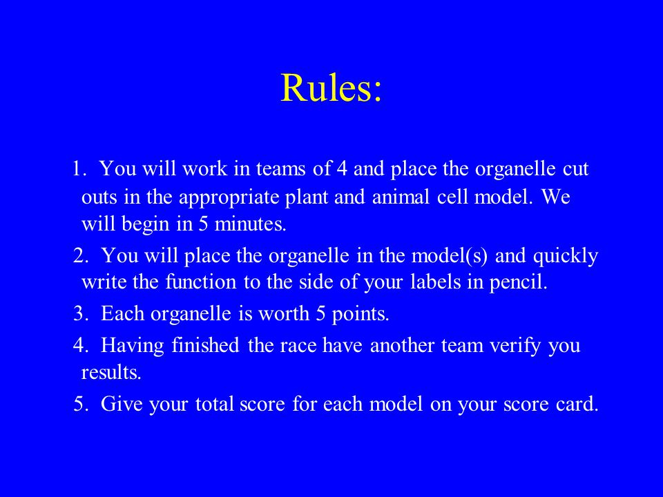 Rules: 1. You will work in teams of 4 and place the organelle cut outs in the appropriate plant and animal cell model. We will begin in 5 minutes.
