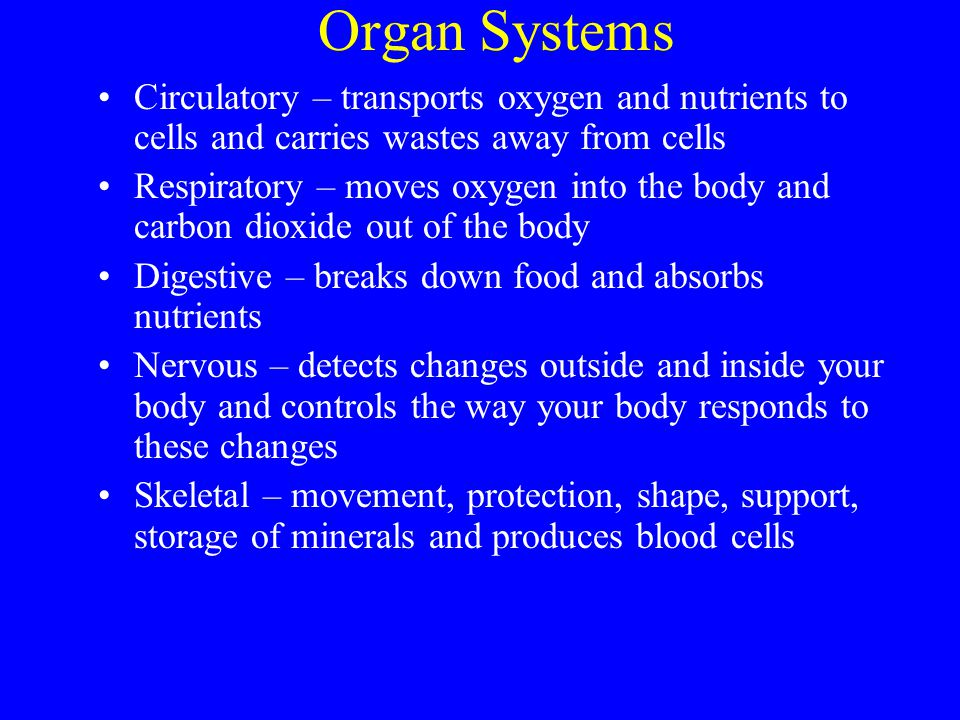 Organ Systems Circulatory – transports oxygen and nutrients to cells and carries wastes away from cells.