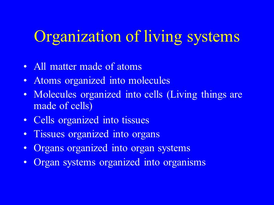 Organization of living systems
