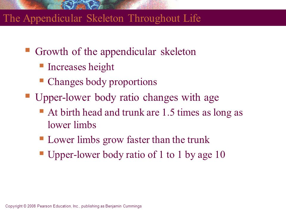 The Appendicular Skeleton Throughout Life