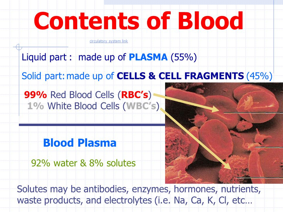 Contents of Blood Blood Plasma Liquid part : made up of PLASMA (55%)