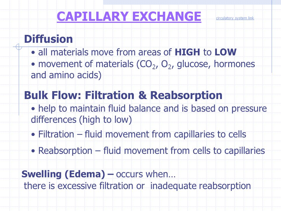 CAPILLARY EXCHANGE Diffusion Bulk Flow: Filtration & Reabsorption