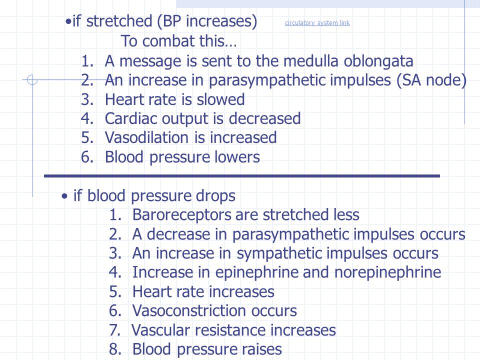 if stretched (BP increases) To combat this…