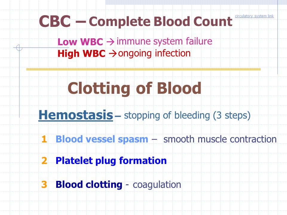 CBC – Clotting of Blood Complete Blood Count Hemostasis – Low WBC 