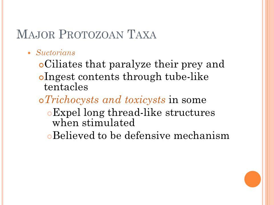 Major Protozoan Taxa Ciliates that paralyze their prey and