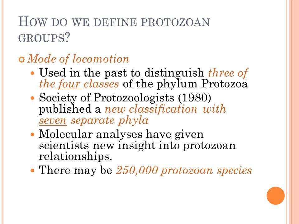 How do we define protozoan groups
