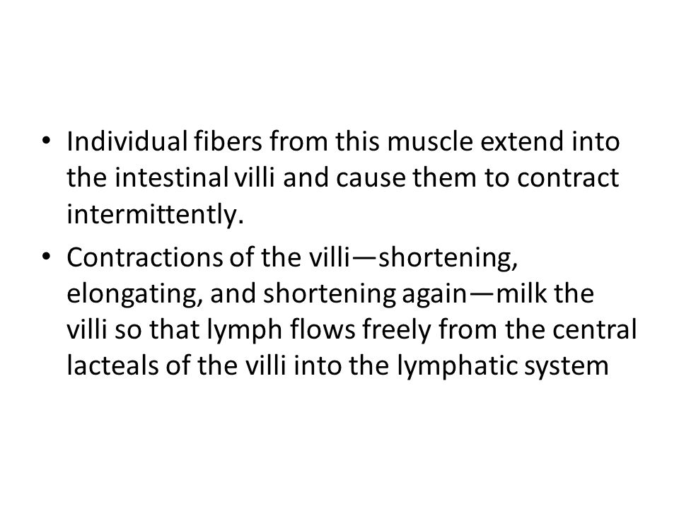 Individual fibers from this muscle extend into the intestinal villi and cause them to contract intermittently.