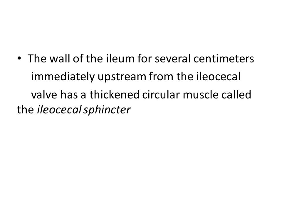 The wall of the ileum for several centimeters