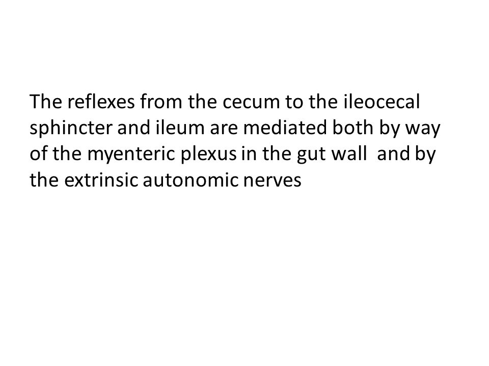 The reflexes from the cecum to the ileocecal sphincter and ileum are mediated both by way of the myenteric plexus in the gut wall and by the extrinsic autonomic nerves