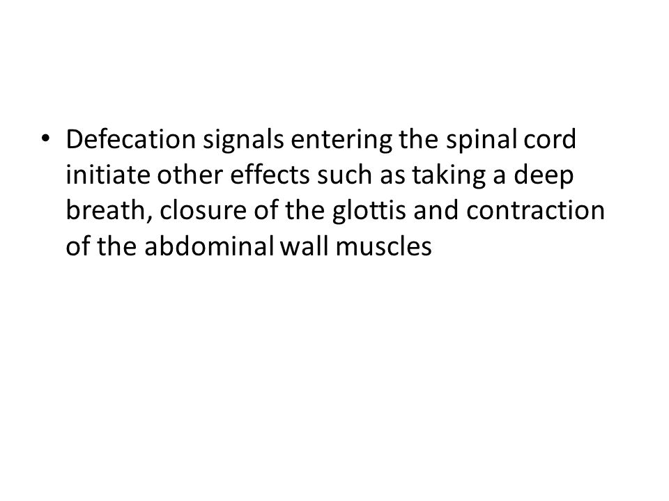 Defecation signals entering the spinal cord initiate other effects such as taking a deep breath, closure of the glottis and contraction of the abdominal wall muscles