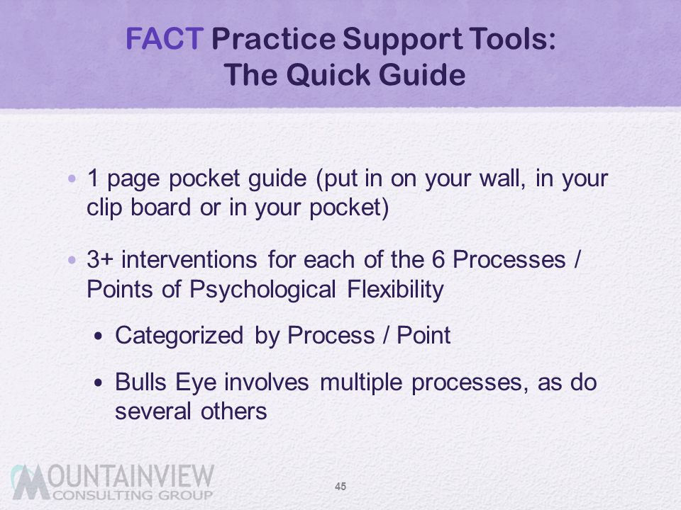 FACT Practice Support Tools: The Quick Guide