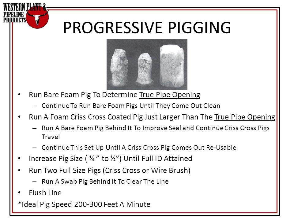 PROGRESSIVE PIGGING Run Bare Foam Pig To Determine True Pipe Opening