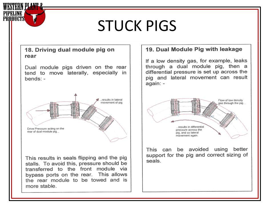 STUCK PIGS