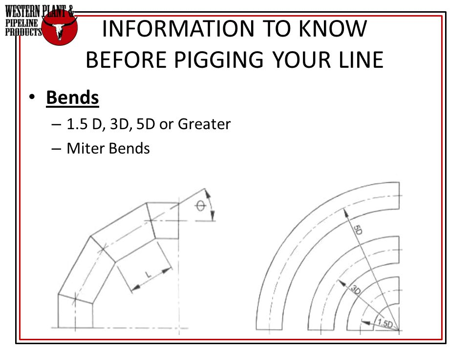 INFORMATION TO KNOW BEFORE PIGGING YOUR LINE