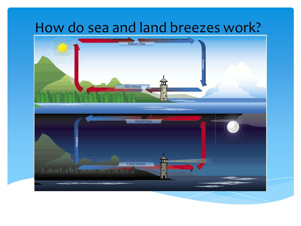 How do sea and land breezes work