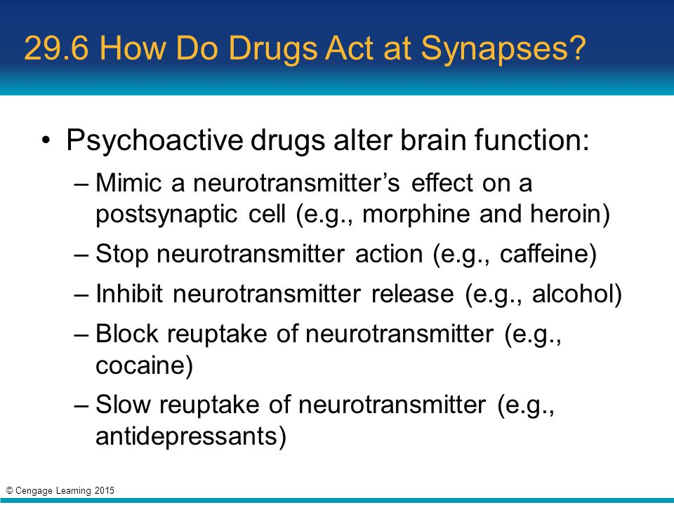 29.6 How Do Drugs Act at Synapses