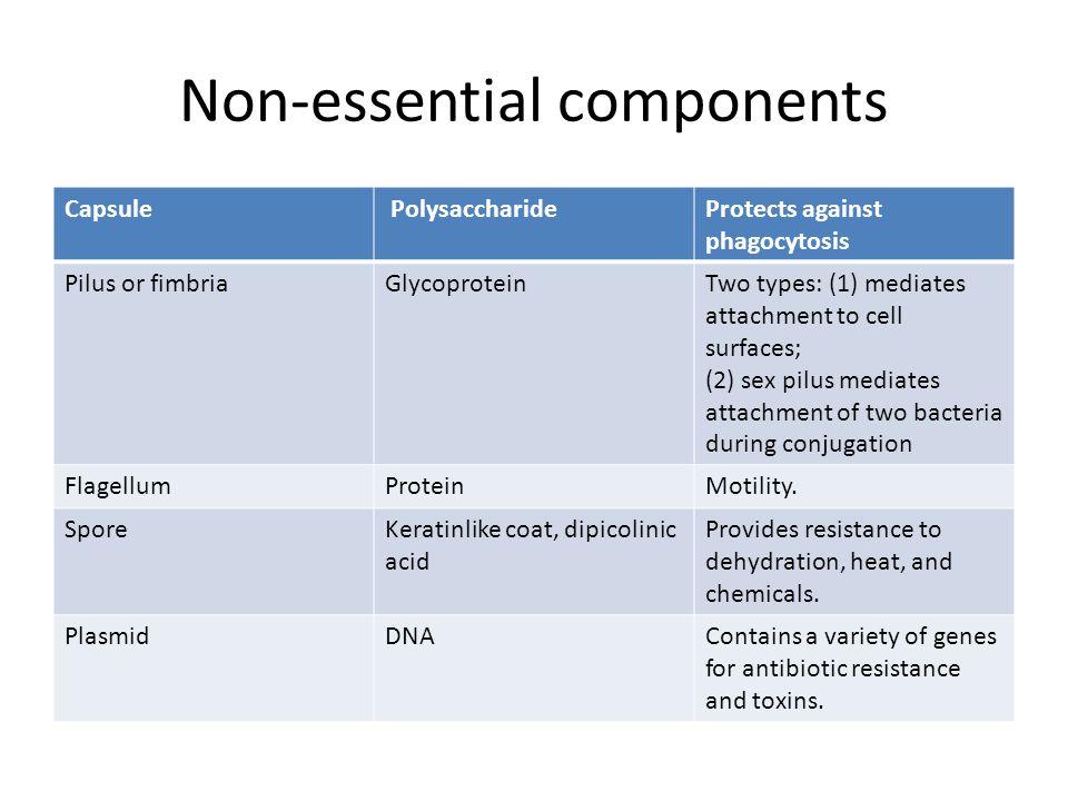 Non-essential components