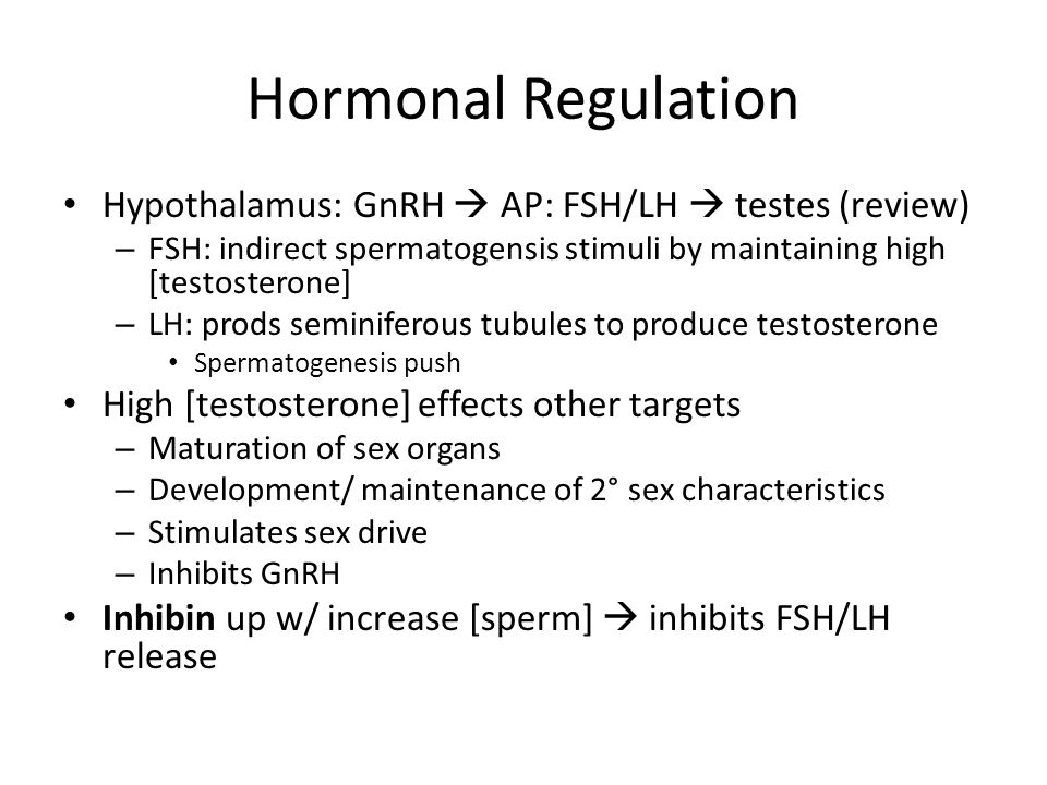 Hormonal Regulation Hypothalamus: GnRH  AP: FSH/LH  testes (review)