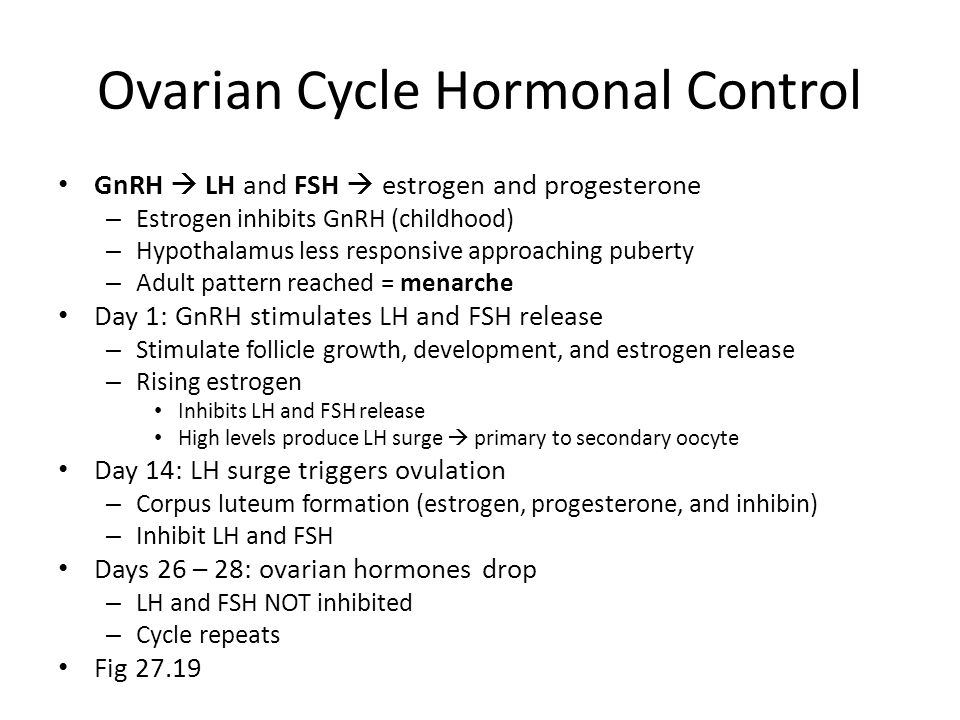 Ovarian Cycle Hormonal Control