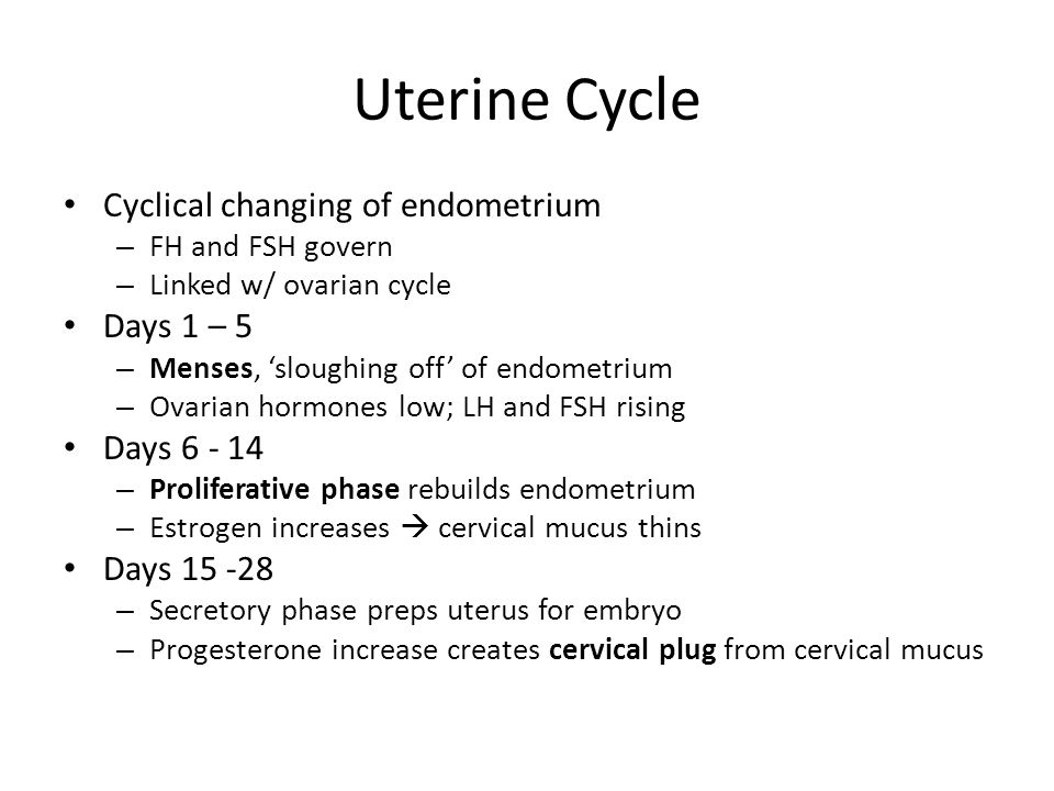 Uterine Cycle Cyclical changing of endometrium Days 1 – 5 Days 6 - 14