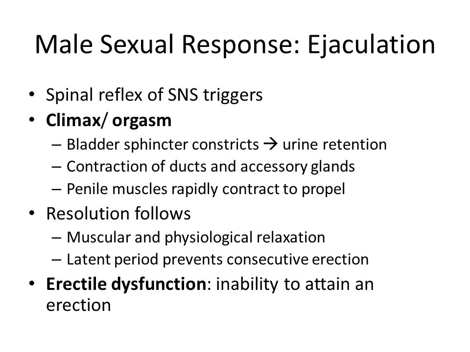 Male Sexual Response: Ejaculation
