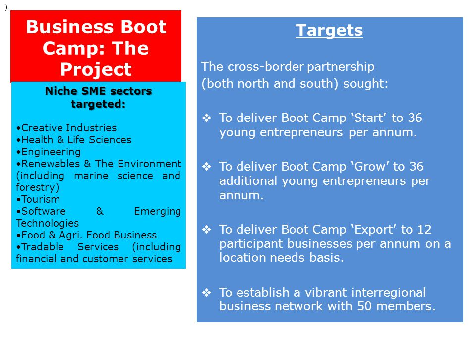 Business Boot Camp: The Project