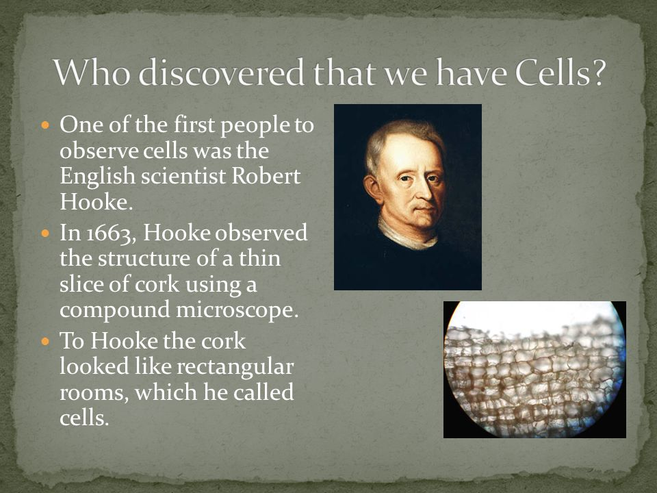 Who discovered that we have Cells