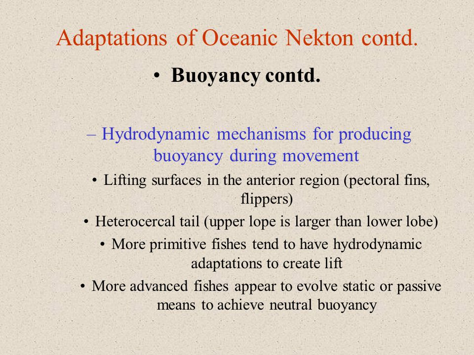 Adaptations of Oceanic Nekton contd.