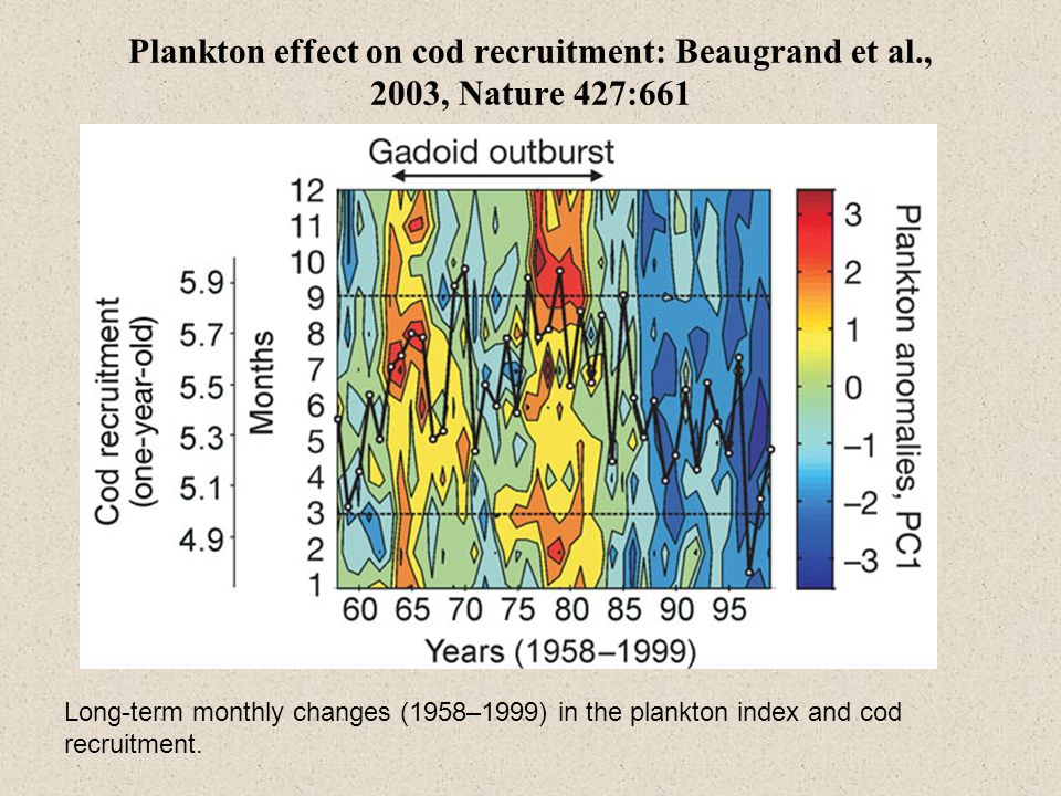 Plankton effect on cod recruitment: Beaugrand et al