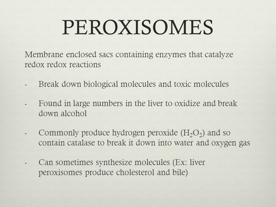 PEROXISOMES Membrane enclosed sacs containing enzymes that catalyze redox redox reactions. Break down biological molecules and toxic molecules.