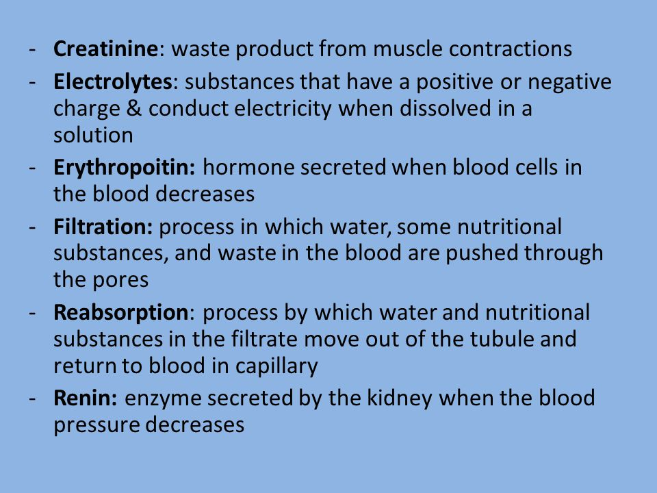 Creatinine: waste product from muscle contractions