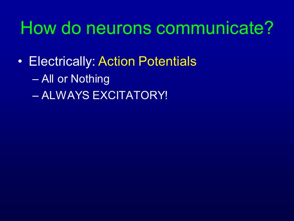 How do neurons communicate