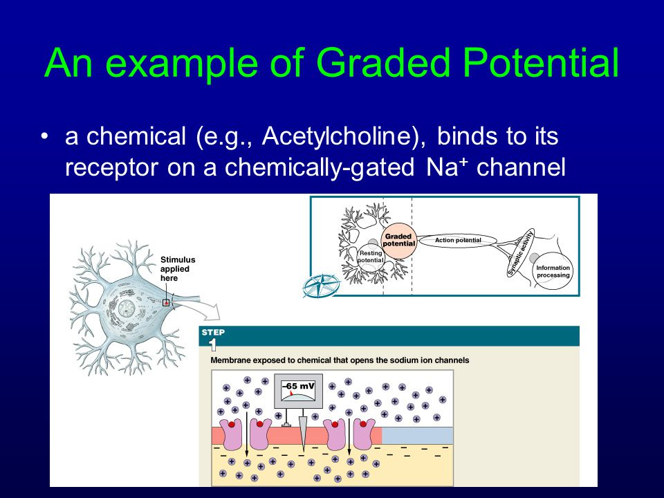 An example of Graded Potential