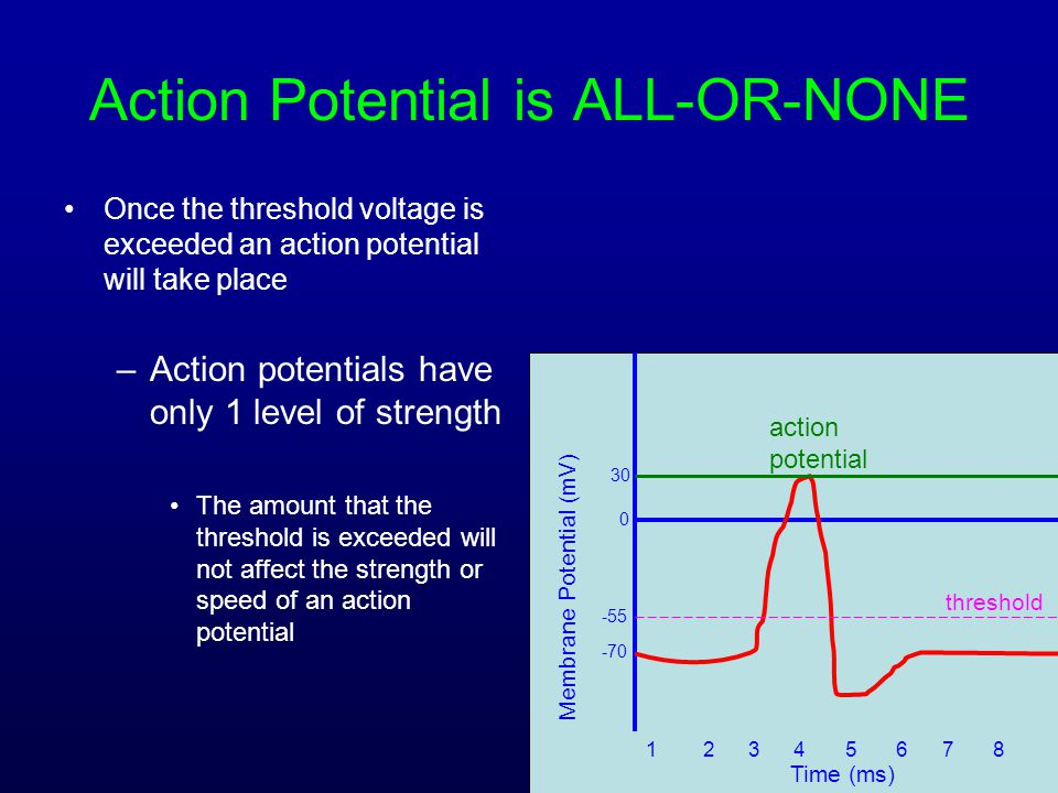 Action Potential is ALL-OR-NONE
