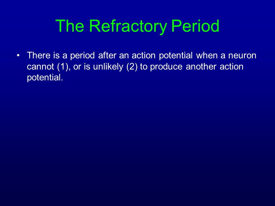 The Refractory Period There is a period after an action potential when a neuron cannot (1), or is unlikely (2) to produce another action potential.