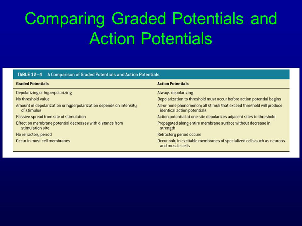 Comparing Graded Potentials and Action Potentials