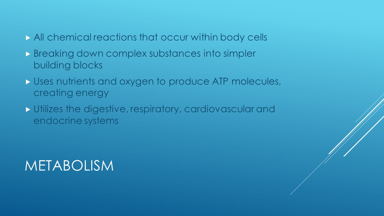 Metabolism All chemical reactions that occur within body cells